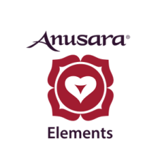 badge-elements-300 ridimensionata